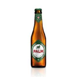 Palm 24x25cl